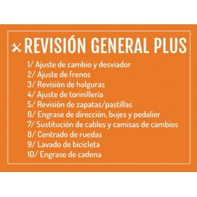 REVISIÓN GENERAL PLUS