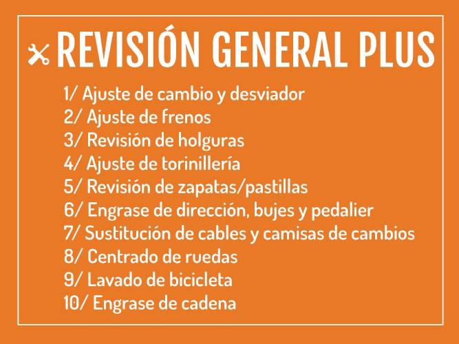Revisión General Plus Salchi